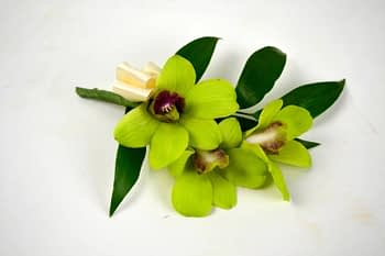 boutonnieres-corsages-orchid