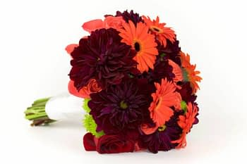 shasta-daisy-bouquet-minnesota-minneapolis