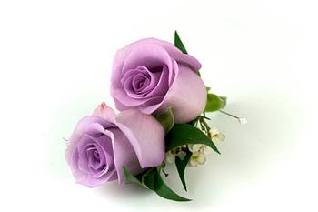 wedding-boutonnieres-corsages-minneapolis-purple-rose
