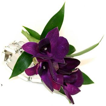 wedding-corsages-minneapolis-st-paul-purple-orchid